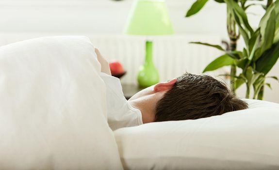 Pflanzen im Schlafzimmer | BKK24